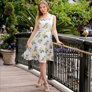 NWT Eva Rose Katie Fit and Flare Lemon Print Dress